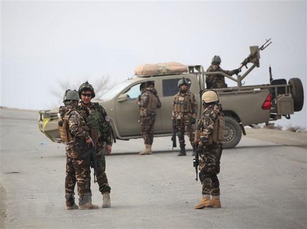 An Do, Nga tai khang dinh ung ho tien trinh hoa binh o Afghanistan hinh anh 1