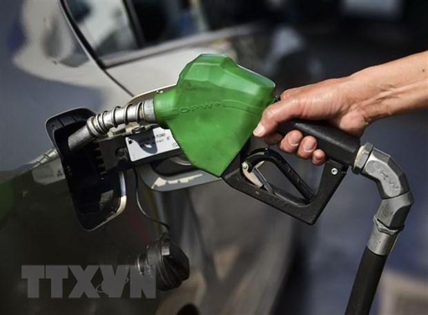 OPEC ky vong gia dau se som o trang thai on dinh tu dau nam 2019 hinh anh 1
