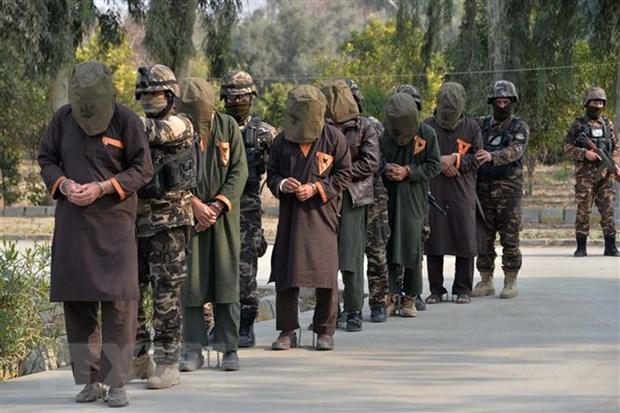 Tuong My: Afghanistan can tham gia cac cuoc dam phan giua My-Taliban hinh anh 1
