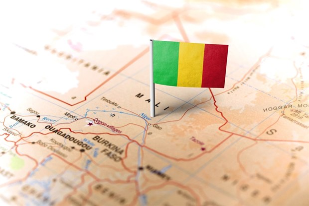 Mali: Hang chuc nghin nguoi tham gia bieu tinh chong chinh phu hinh anh 1