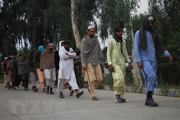 Afghanistan xong vao hang o, tieu diet nhieu phien quan Taliban hinh anh 1