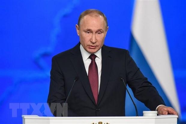 Tong thong Putin keu goi doi pho voi tan cong mang nham vao Nga hinh anh 1