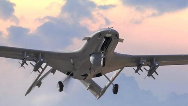 Ukraine thu nghiem thanh cong UAV tac chien do Tho Nhi Ky che tao hinh anh 1