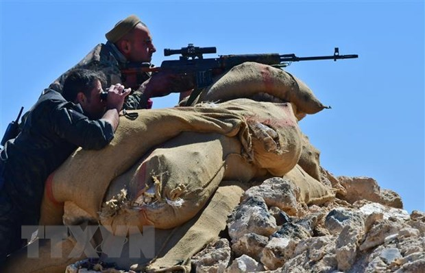 Syria: SDF tuyen bo da loai bo hoan toan cac tay sung IS hinh anh 1