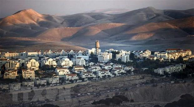 Palestine chi trich binh luan cua My ve cac khu dinh cu Israel hinh anh 1