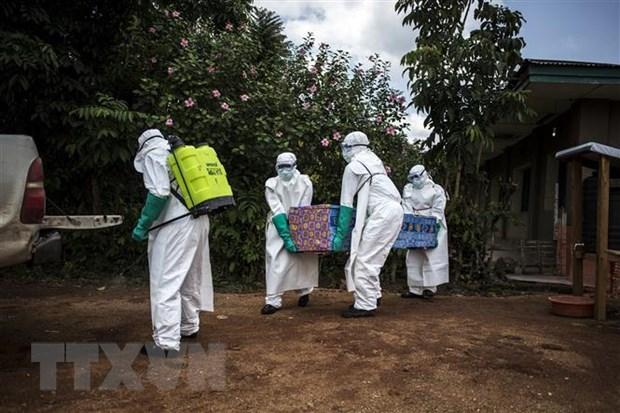WHO: 25% so ca nhiem Ebola khong duoc phat hien tai CHDC Congo hinh anh 1