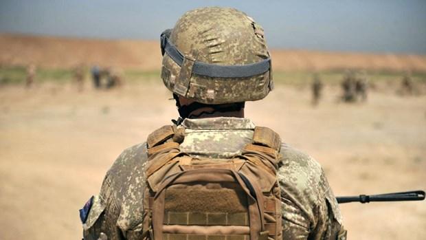New Zealand len ke hoach rut quan khoi Iraq vao nam toi hinh anh 1