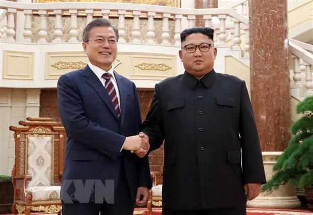 Tong thong Han Quoc muon gap ong Kim Jong-un truoc khi tiep ong Trump hinh anh 1