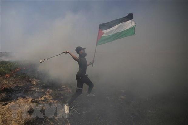Palestine keu goi bieu tinh phan doi Ke hoach Hoa binh Trung Dong hinh anh 1