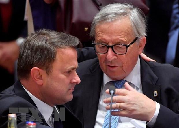 EU khong thong nhat duoc ung cu vien chuc chu tich Uy ban chau Au hinh anh 1