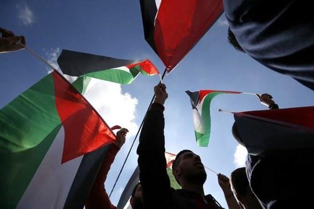 Oman quyet dinh mo Dai su quan de ung ho nhan dan Palestine hinh anh 1
