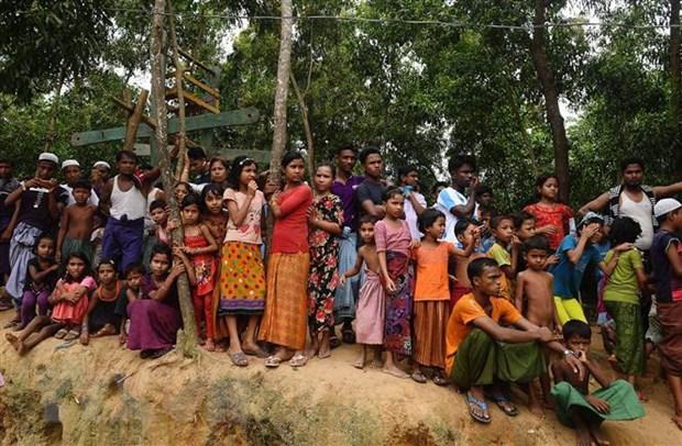 LHQ tai khoi dong ke hoach hoi huong nguoi Rohingya ve Myanmar hinh anh 1