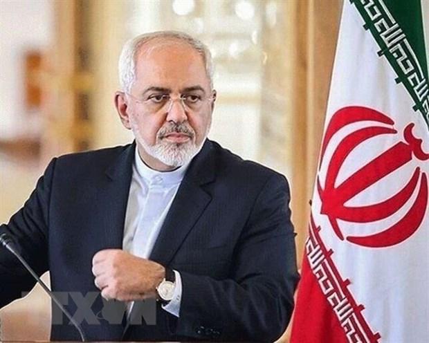 Ngoai truong Iran Javad Zarif den dia diem dien ra thuong dinh G7 hinh anh 1