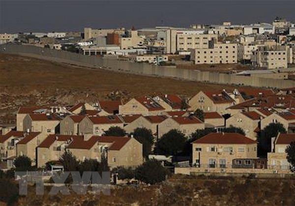 Palestine len an dong thai moi cua My lien quan den Jerusalem hinh anh 1
