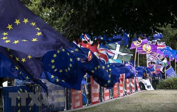 Phap hoai nghi hieu qua cua viec tri hoan tien trinh Brexit hinh anh 1