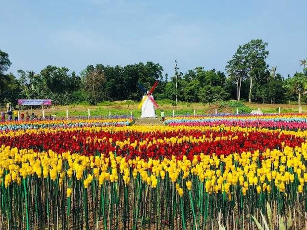 Ruc ro vuon hoa tulip lam tu rac thai nhua tai Philippines hinh anh 1