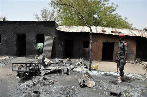 Nigeria: Boko Haram tien hanh nhieu vu tan cong gay thuong vong hinh anh 1