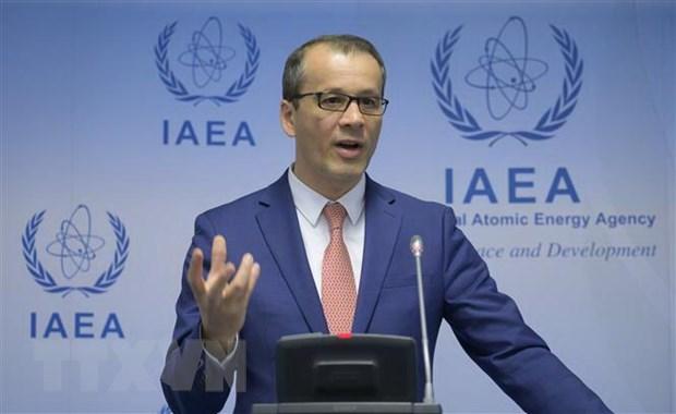 IAEA: Vai tro cua dien hat nhan trong cuoc chien bien doi khi hau hinh anh 1