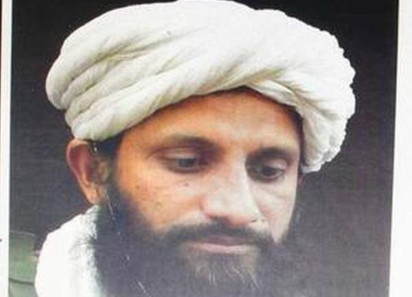 Thu linh al-Qaeda o khu vuc Nam A bi tieu diet o Afghanistan hinh anh 1