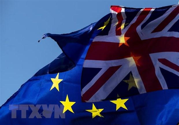 EU chua quyet dinh ve khoang thoi gian cho phep gia han Brexit hinh anh 1