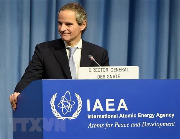 IAEA chinh thuc thong qua quyet dinh bo nhiem tan tong giam doc hinh anh 1