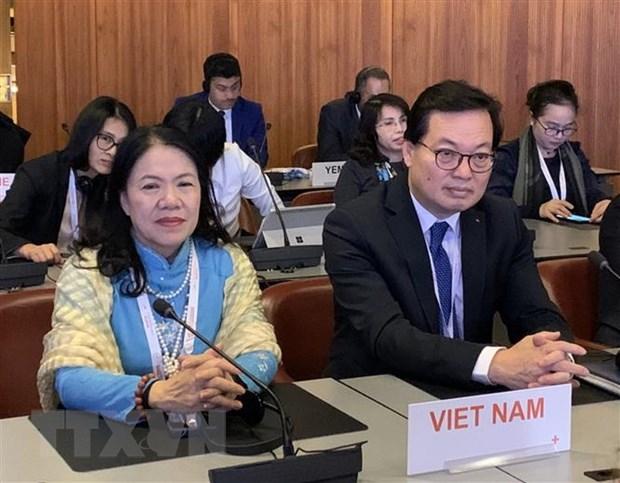 Viet Nam tham gia tich cuc Hoi nghi Chu thap Do va Trang Luoi liem Do hinh anh 1