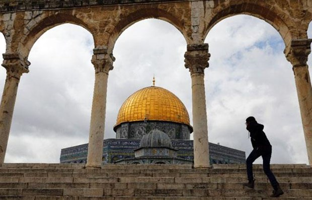 Lien doan Arab phan doi Brazil mo van phong thuong mai tai Jerusalem hinh anh 1