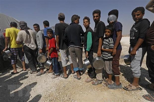 SOHR: Hon 60 nguoi thiet mang do dung do o Syria trong 24 gio hinh anh 1