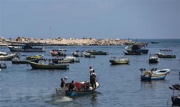 UNRWA lo ngai tinh hinh nhan dao xau di tai Dai Gaza hinh anh 1