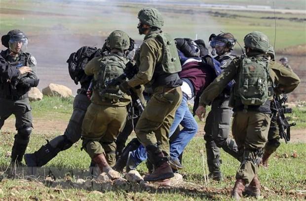 Nguoi Palestine tuan hanh phan doi ke hoach hoa binh Trung Dong cua My hinh anh 1