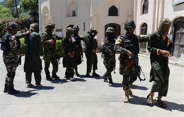 Chinh phu Afghanistan thanh lap doan dam phan hoa binh voi Taliban hinh anh 1