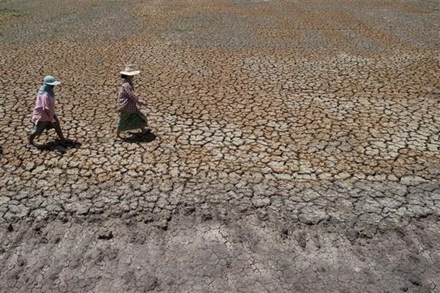 Thai Lan doi mat han han tram trong, nguy co that nghiep tang cao hinh anh 1