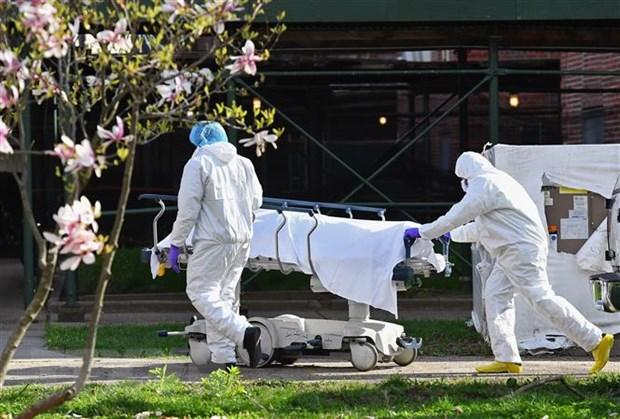 'Virus SARS-CoV-2 toi New York tu chau Au, khong phai Trung Quoc' hinh anh 1