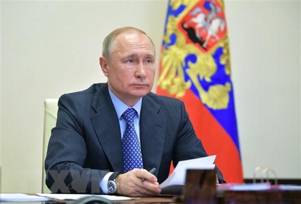Ong Putin ky ban hanh luat don gian hoa thu tuc nhap quoc tich Nga hinh anh 1