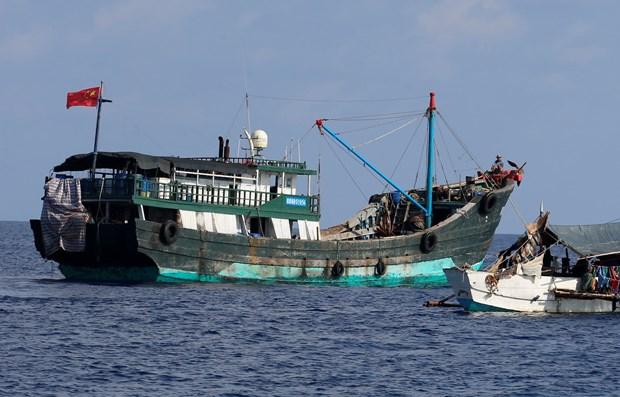 Indonesia len an chu tau Trung Quoc doi xu ''vo nhan dao'' voi ngu dan hinh anh 1