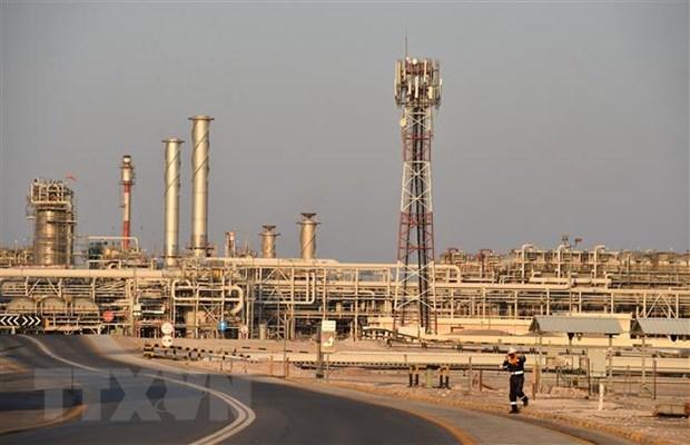 Saudi Arabia va Iraq cam ket tuan thu day du thoa thuan OPEC+ hinh anh 1