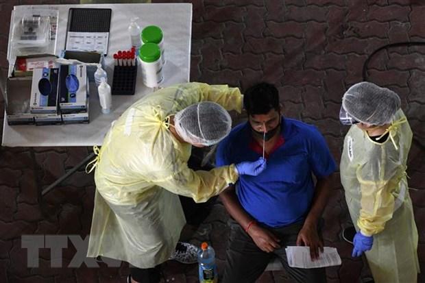 Singapore tim ra phuong phap xet nghiem nhanh virus SARS-CoV-2 hinh anh 1