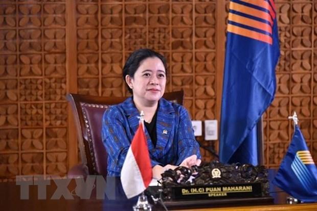 Chu tich Ha vien Indonesia danh gia cao dau an cua Quoc hoi Viet Nam hinh anh 1