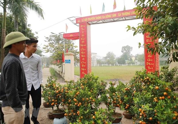 Nguoi dan Dong Tam dang chung suc, no luc xay dung nong thon moi hinh anh 1