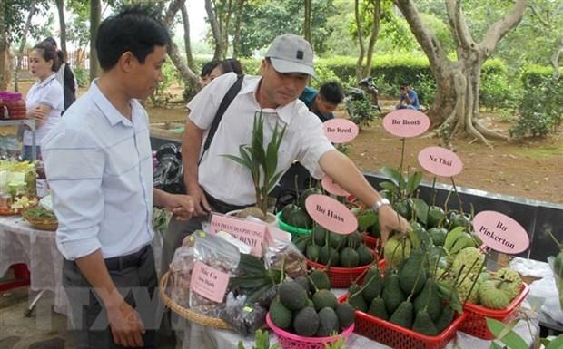 Tinh Phu Yen khai truong tuyen du lich cao nguyen Van Hoa hinh anh 1
