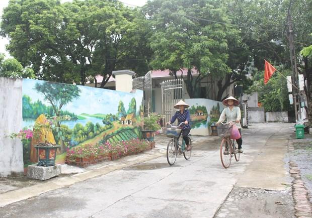 Ninh Binh: Lac loi voi nhung con duong bich hoa tai vung que yen binh hinh anh 1
