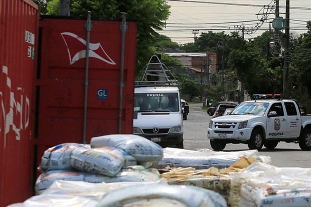 Phat hien 7 tu thi dang phan huy trong mot container o Paraguay hinh anh 1
