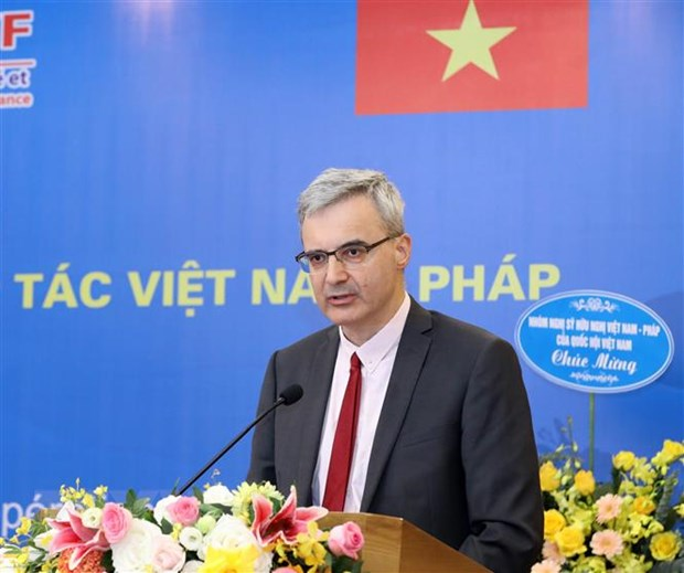 Khong ngung dong gop cho su phat trien cua quan he Viet Nam-Phap hinh anh 2