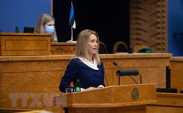 Hai dang o Estonia dong y lien minh thanh lap chinh phu moi hinh anh 1