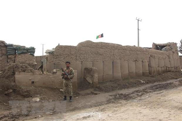Quan doi Afghanistan tieu diet hon 30 tay sung Taliban hinh anh 1