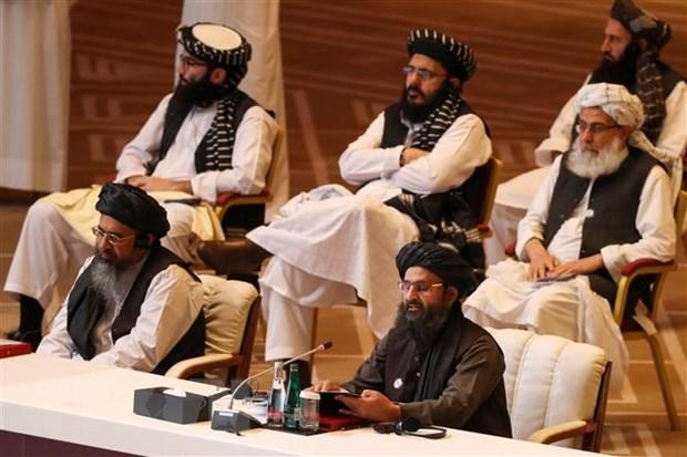 Dai dien Chinh phu Afghanistan va luc luong Taliban noi lai hoa dam hinh anh 1