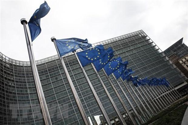 Lanh dao EU hop ban ke hoach phuc hoi sau dai dich COVID-19 hinh anh 1