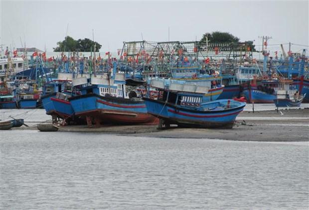 Ninh Thuan voi giai phap giup ngu dan khai thac thuy san hop phap hinh anh 1