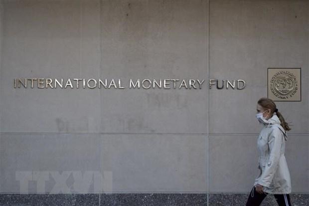 IMF thong qua goi ho tro ky luc giup cac nuoc chong dai dich COVID-19 hinh anh 1