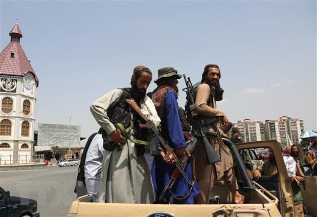 Lanh dao G7 se thong nhat ve viec cong nhan hoac trung phat Taliban hinh anh 1